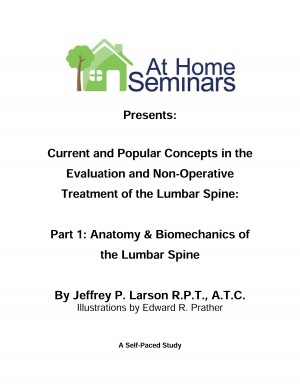 Current & Popular Concepts in the Evaluation and Non-Operative Treatment of the Lumbar Spine: Part 1: Lumbar Spine Anatomy & Biomechanics