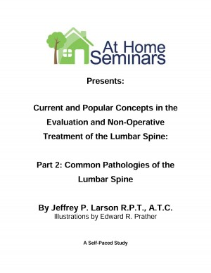 Current & Popular Concepts in the Evaluation and Non-Operative Treatment of the Lumbar Spine: Part 2: Common Pathologies of the Lumbar Spine